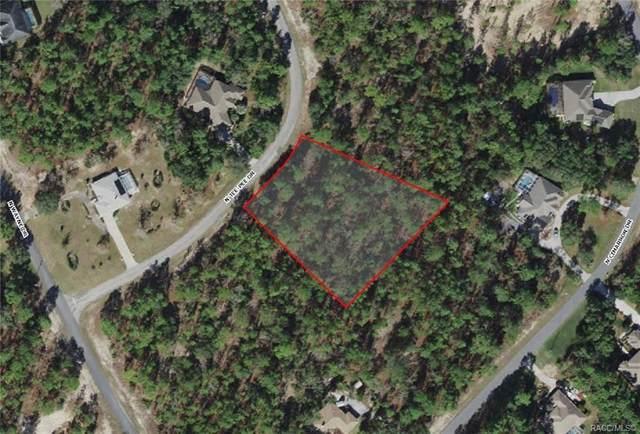 5021 N Tee Pee Drive, Beverly Hills, FL 34465 (MLS #804372) :: Plantation Realty Inc.