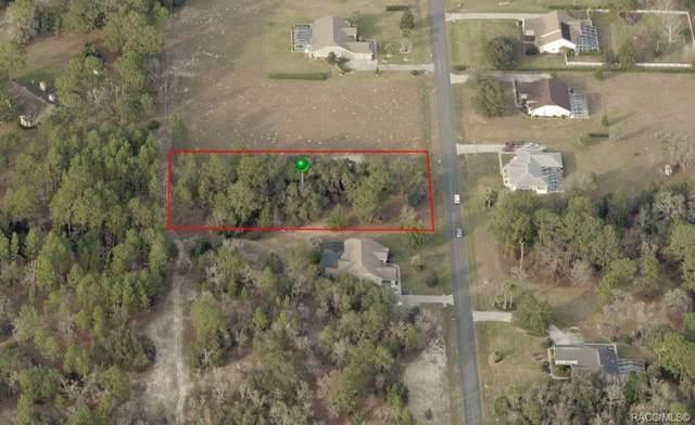 968 N Man O War Drive, Inverness, FL 34453 (MLS #804395) :: Plantation Realty Inc.