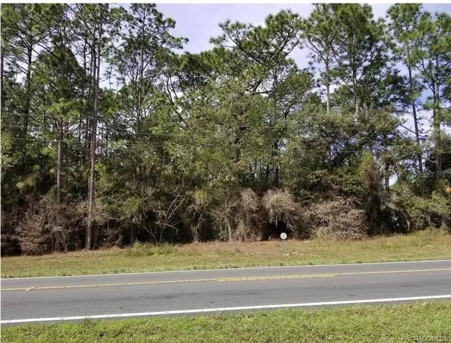 5439 Us 41 Highway, Dunnellon, FL 34432 (MLS #804450) :: Plantation Realty Inc.