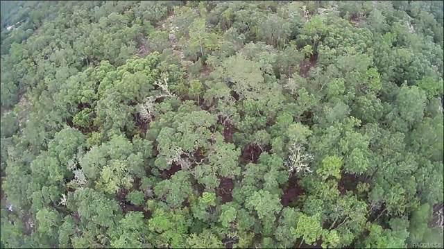 0000 NE 88th Lane, Bronson, FL 32621 (MLS #804454) :: Plantation Realty Inc.