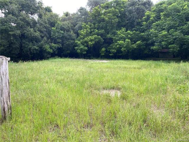 8663 Hooker Place, Floral City, FL 34436 (MLS #804460) :: Plantation Realty Inc.