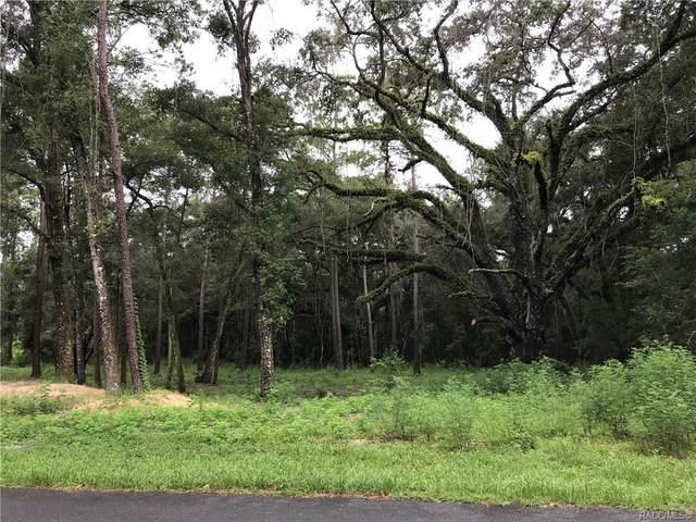11678 N Landover Terrace, Citrus Springs, FL 34434 (MLS #804500) :: Plantation Realty Inc.