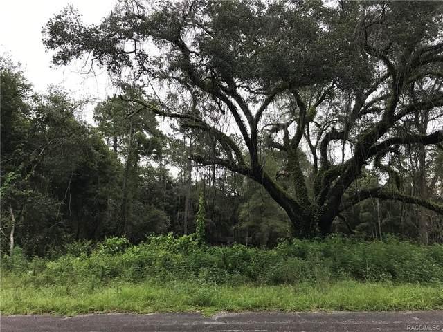 11560 N Kenlake Circle, Citrus Springs, FL 34434 (MLS #804503) :: Plantation Realty Inc.