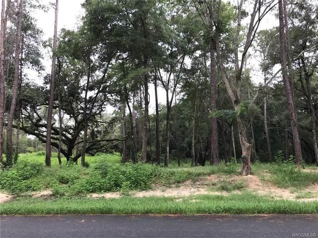 11654 N Landover Terrace, Citrus Springs, FL 34434 (MLS #804506) :: Plantation Realty Inc.