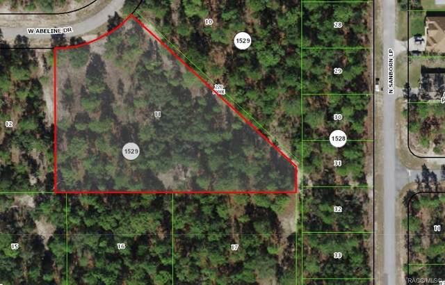 4021 W Abeline Drive, Citrus Springs, FL 34433 (MLS #804684) :: Plantation Realty Inc.
