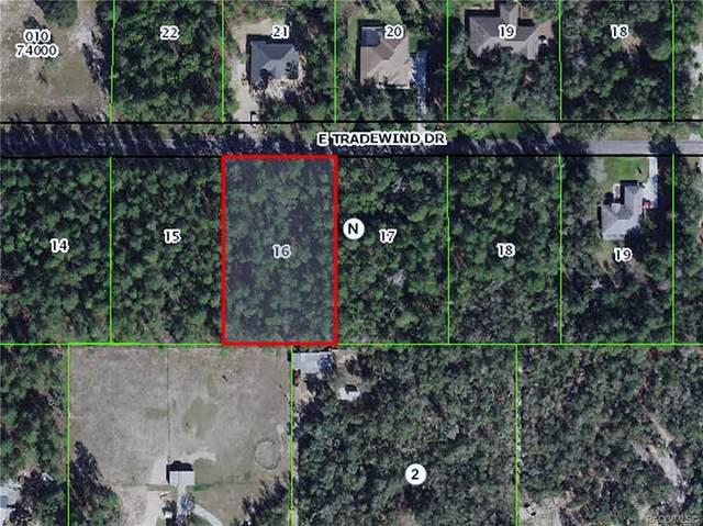 1602 E Tradewind Drive, Hernando, FL 34442 (MLS #804788) :: Plantation Realty Inc.