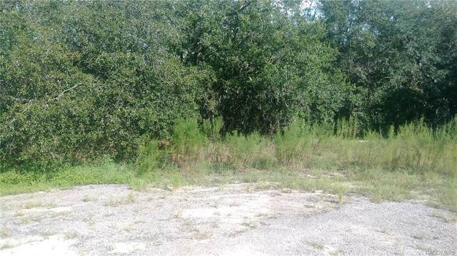 6025 N Matthew Point, Citrus Springs, FL 34434 (MLS #804905) :: Plantation Realty Inc.