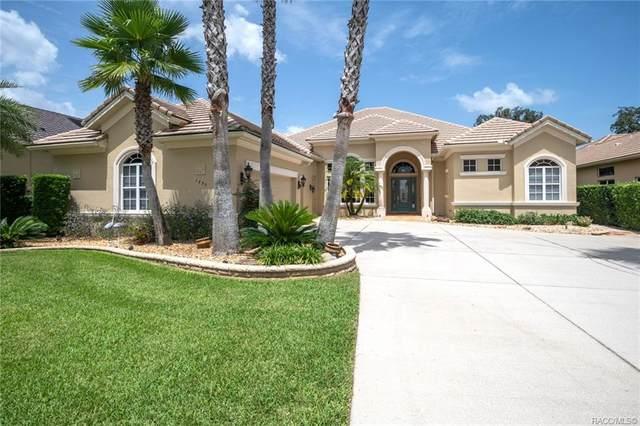 1733 N Sky Glen Path, Hernando, FL 34442 (MLS #805024) :: Plantation Realty Inc.