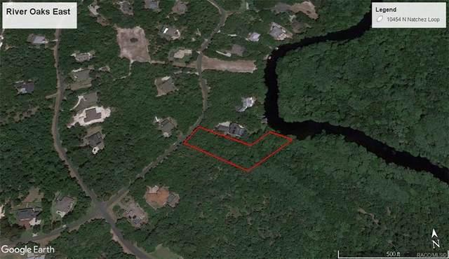 10454 N Natchez Loop, Dunnellon, FL 34434 (MLS #805119) :: Plantation Realty Inc.