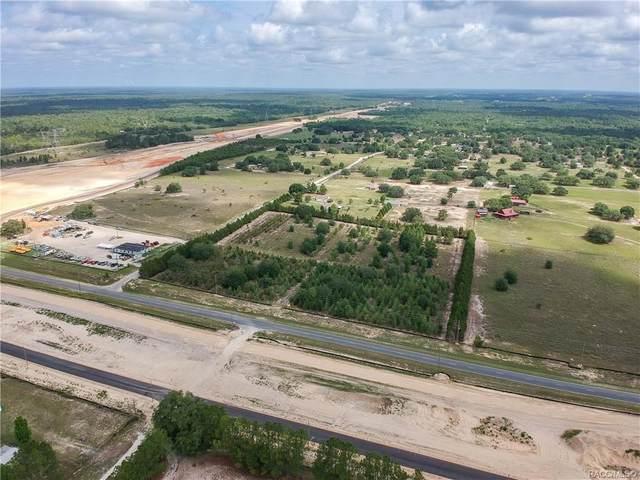 6719 S Georgian Road, Homosassa, FL 34446 (MLS #805152) :: Plantation Realty Inc.