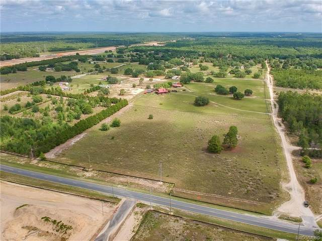 6702 S Wildermuth Point, Homosassa, FL 34446 (MLS #805159) :: Plantation Realty Inc.