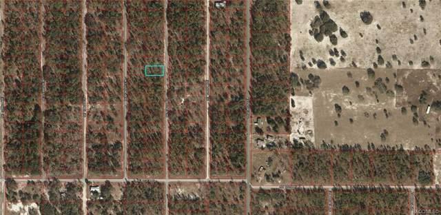 Lot 22 SE 135th Court, Dunnellon, FL 34431 (MLS #805194) :: Plantation Realty Inc.