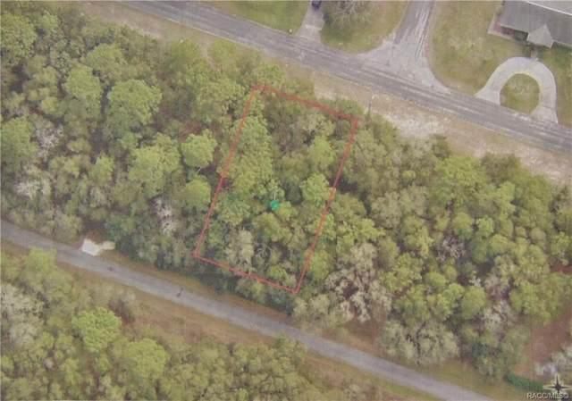 9895 N Sandree Drive, Citrus Springs, FL 34434 (MLS #805255) :: Plantation Realty Inc.