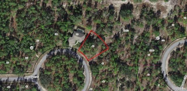 16 Pagoda Court E, Homosassa, FL 34446 (MLS #805328) :: Plantation Realty Inc.