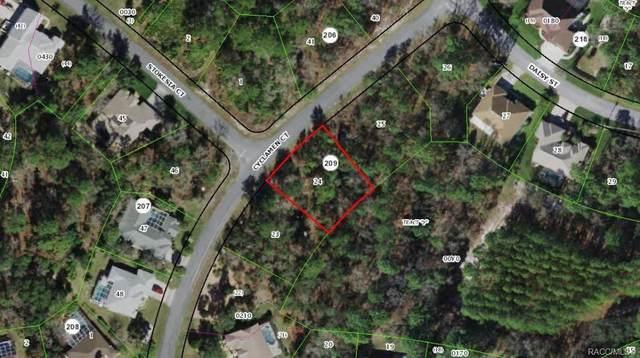 5 Cyclamen Court, Homosassa, FL 34446 (MLS #805331) :: Plantation Realty Inc.