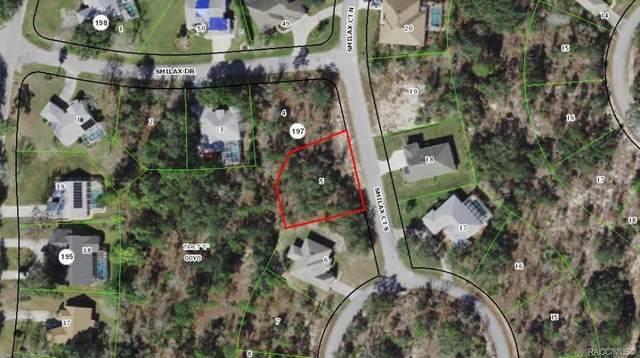 3 Smilax Court S, Homosassa, FL 34446 (MLS #805334) :: Plantation Realty Inc.