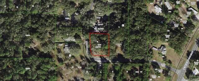 6733 N Dawson Drive, Hernando, FL 34442 (MLS #805349) :: Plantation Realty Inc.