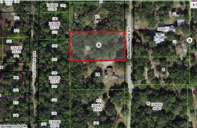 10366 N Burgundy Point, Dunnellon, FL 34433 (MLS #805364) :: Plantation Realty Inc.