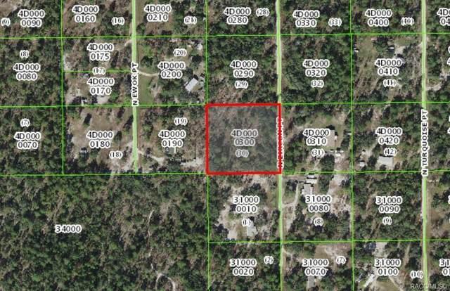 6530 N Zircon Point, Dunnellon, FL 34433 (MLS #805367) :: Plantation Realty Inc.