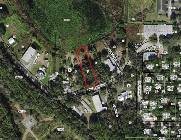 1610 White Lake Drive, Inverness, FL 34453 (MLS #805386) :: Plantation Realty Inc.