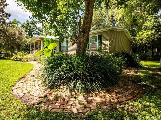 16242 NW 130th Street, Williston, FL 32696 (MLS #805395) :: Plantation Realty Inc.