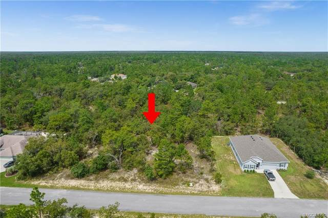 19 Lupine Street, Homosassa, FL 34446 (MLS #805422) :: Plantation Realty Inc.