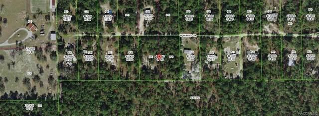 6850 W Mable Lane, Dunnellon, FL 34433 (MLS #805431) :: Plantation Realty Inc.
