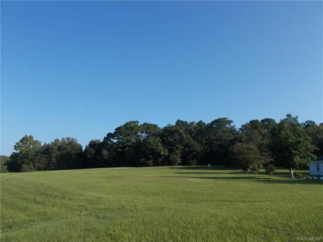973 E Triple Crown Loop, Hernando, FL 34442 (MLS #805456) :: Plantation Realty Inc.