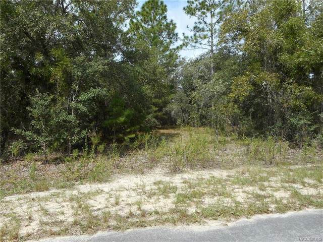L 8 SW Tamiami Place, Dunnellon, FL 34431 (MLS #805539) :: Plantation Realty Inc.