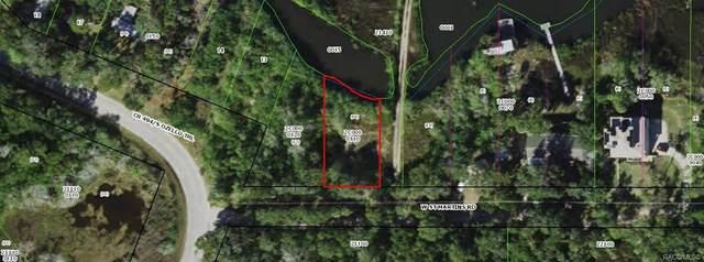 14283 W Saint Martins Road, Crystal River, FL 34429 (MLS #805567) :: Plantation Realty Inc.