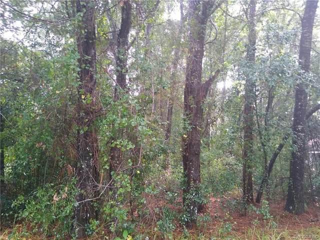 6588 E Lowden Street, Inverness, FL 34452 (MLS #805598) :: Plantation Realty Inc.