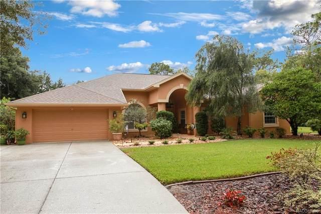 75 Douglas Street, Homosassa, FL 34446 (MLS #805610) :: Plantation Realty Inc.