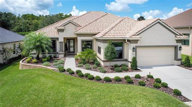 1578 N Ridge Meadow Path, Hernando, FL 34442 (MLS #805654) :: Plantation Realty Inc.