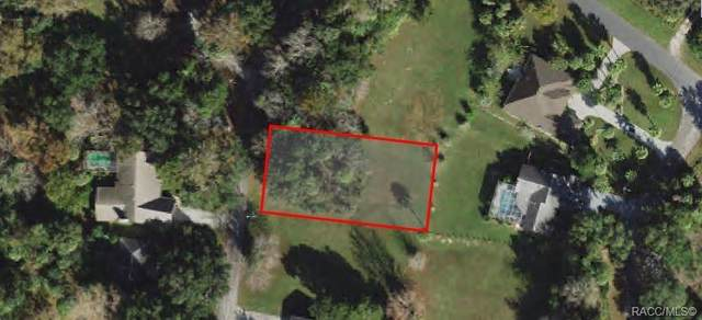 4907 S Driftwood Way, Homosassa, FL 34448 (MLS #805658) :: Plantation Realty Inc.