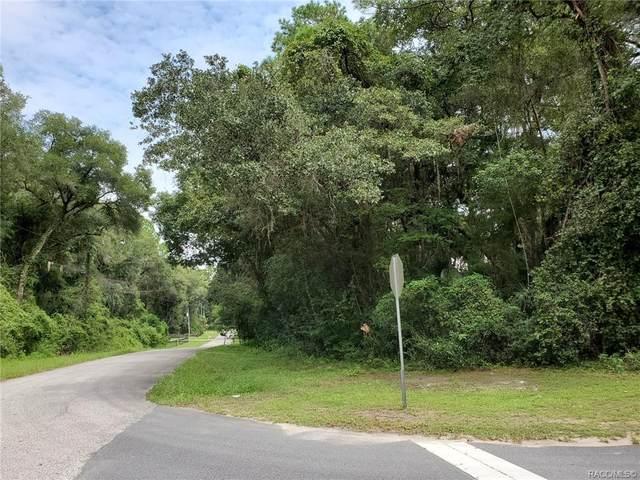 644 W Lightwood Street, Citrus Springs, FL 34434 (MLS #805688) :: Plantation Realty Inc.