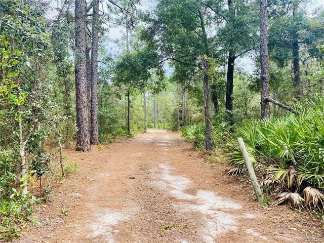 4885 N Mattox Point, Crystal River, FL 34428 (MLS #805701) :: Plantation Realty Inc.