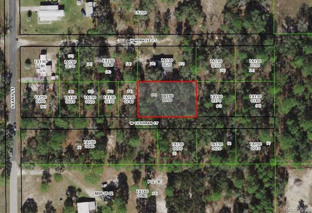 1181 W Cushman Court, Lecanto, FL 34461 (MLS #805732) :: Plantation Realty Inc.
