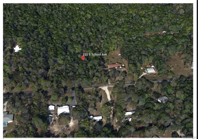 222 S School Avenue, Lecanto, FL 34461 (MLS #805736) :: Plantation Realty Inc.