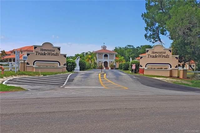 4843 S Acree Point, Homosassa, FL 34448 (MLS #805752) :: Plantation Realty Inc.