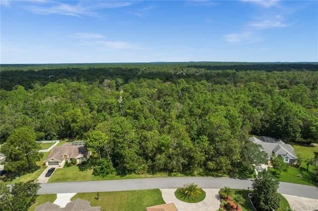 56 Linder Circle, Homosassa, FL 34446 (MLS #805761) :: Plantation Realty Inc.