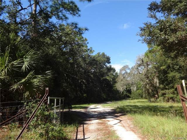 1628 S Palm Avenue, Homosassa, FL 34448 (MLS #805767) :: Plantation Realty Inc.