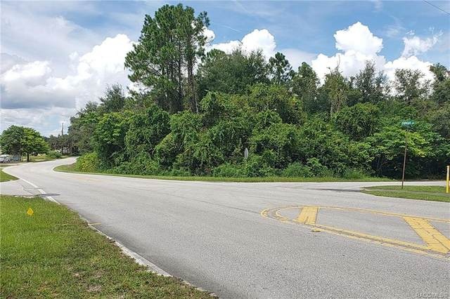 2606 Forest Drive, Inverness, FL 34453 (MLS #805775) :: Plantation Realty Inc.