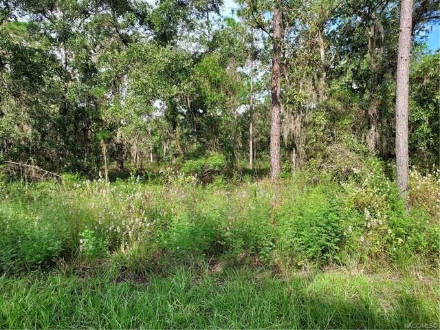TBD Se 126th Terrace, Dunnellon, FL 34432 (MLS #805785) :: Plantation Realty Inc.
