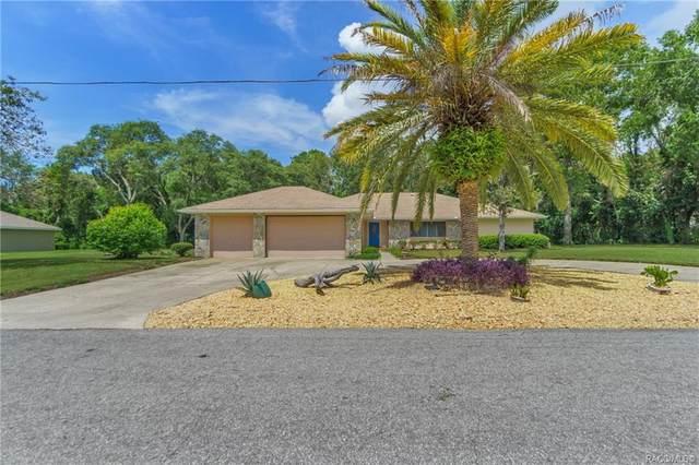 36 Birchtree Street, Homosassa, FL 34446 (MLS #805794) :: Plantation Realty Inc.
