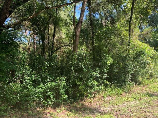 4029 E Walker Street, Inverness, FL 34453 (MLS #805801) :: Plantation Realty Inc.