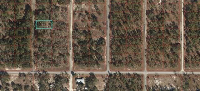 Lot 39 SE 133rd Terrace, Dunnellon, FL 34431 (MLS #805806) :: Plantation Realty Inc.