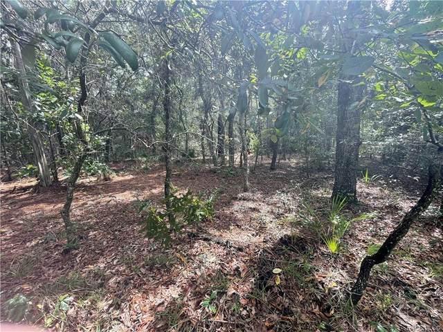 1638 W Ivorywood Drive, Beverly Hills, FL 34465 (MLS #805813) :: Plantation Realty Inc.