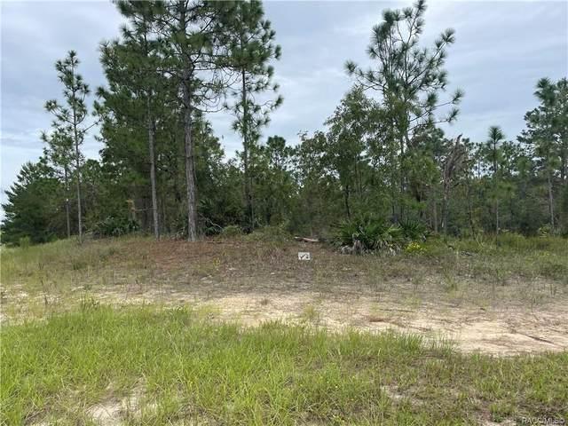5923 N Buffalo Drive, Beverly Hills, FL 34465 (MLS #805833) :: Plantation Realty Inc.