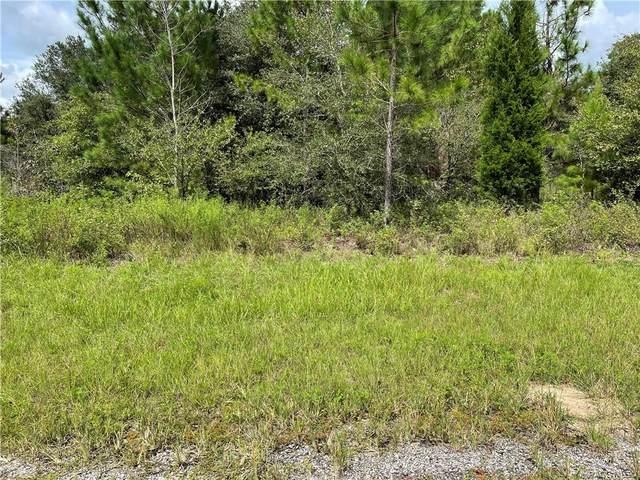 8613 N Garland Way, Citrus Springs, FL 34434 (MLS #805852) :: Plantation Realty Inc.