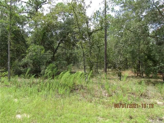 TBD NE 17th Place, Williston, FL 32696 (MLS #805866) :: Plantation Realty Inc.